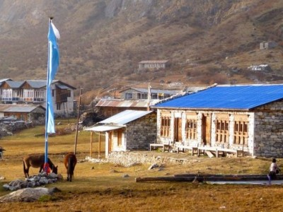 Best Time to Trek in Langtang